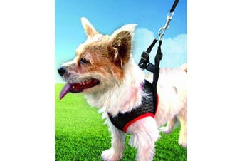 DOG LEASH with MESH VEST Harness 5ft Lead Adjustable Safety Pet Puppy Soft New