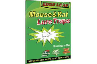 2x Rat Mice Mouse Rodent Bug Cockroach Snare Lure Traps Catcher Sticky Pad