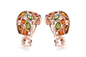 Rainbow Hue Stud Earrings Embellished with Swarovski crystals