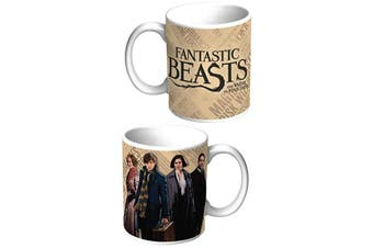 Fantastic Beasts Coffee Mug Group