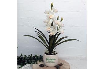 Orchid Cymbidium in Personalised 50th Birthday Pot
