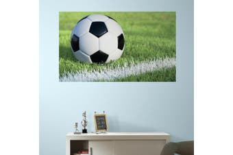 ROOMMATES RMK3340PSM Soccer Peel & Stick Wall Mural - Each