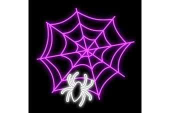 Halloween Spider in Web Rope Light Motif 1m