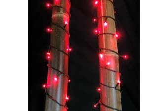 Fairy Lights RED 10m Extendable