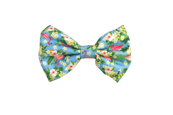 Coco & Pud Flamingo Tropical Dog Bow tie