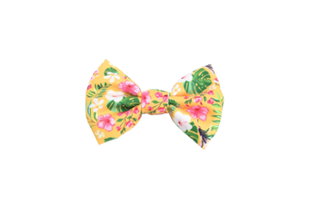 Coco & Pud Summer Sunrise Dog Bow tie