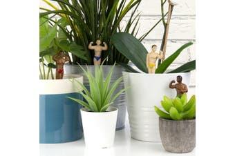 Plant Pot Hunks