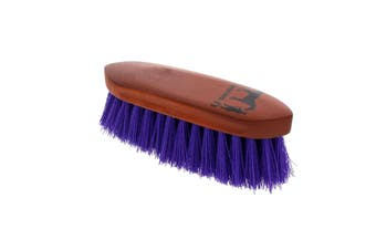 Dandy Brush Small Purple 180mm x 60mm Gymkhana Horse Equine Grooming