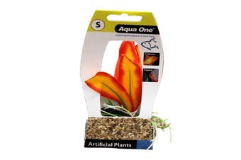Aquarium Plant ORANGE SWORD with Log Base SMALL 28182 Fish Tank Aqua One