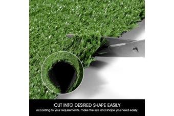 Edengrass 10mm Artificial Grass Fake Lawn 2Mx20M