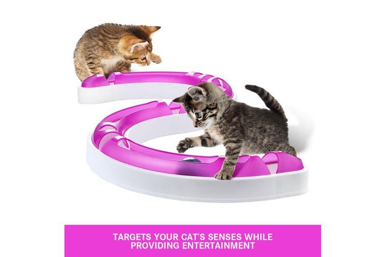 Kitten Pet Cat Track Ball Toy Set