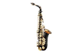 Melodic Eb Be E-flat Alto Saxophone Alto Sax for Beginner Student