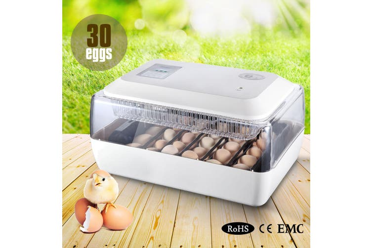 Auto Turning Egg Incubator