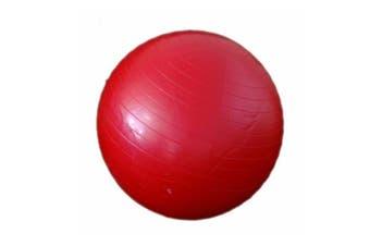 Morgan Gym Ball 55 cm