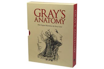 Gray's Anatomy in Slipcase