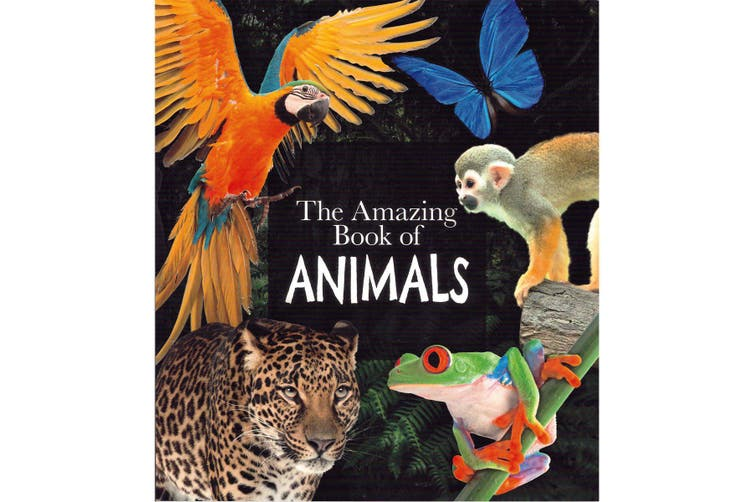 The Amazing Book of Animals