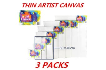 3 x Blank Painting Canvas Artist Stretched White Primer Oil Acrylic Board Frame 3040
