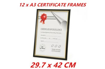 12 x A3 Document Frames Certificate Picture Award Frame Business Registration