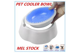 1 x Pet Cooling Cool Bowl Freezable Chilled Water Bowl Summer Chilled Frozen Dog Cat