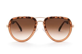 Curtiss Havana Fade - Aviator Sunglasses