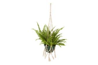 Sikar (set of 4) Plant Hanger