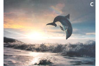 50x70cm Dolphins Sea Stretched Canvas Print on Frame Ready to Hang [Design: C]