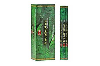 20-240 Incense Sticks HEM Nag Champa 110 Scents Hex Meditation Aroma Fragrance [Scent: Eucalyptus-20 Sticks-HEM]