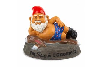 The Sexy & I Gnome It Garden Gnome