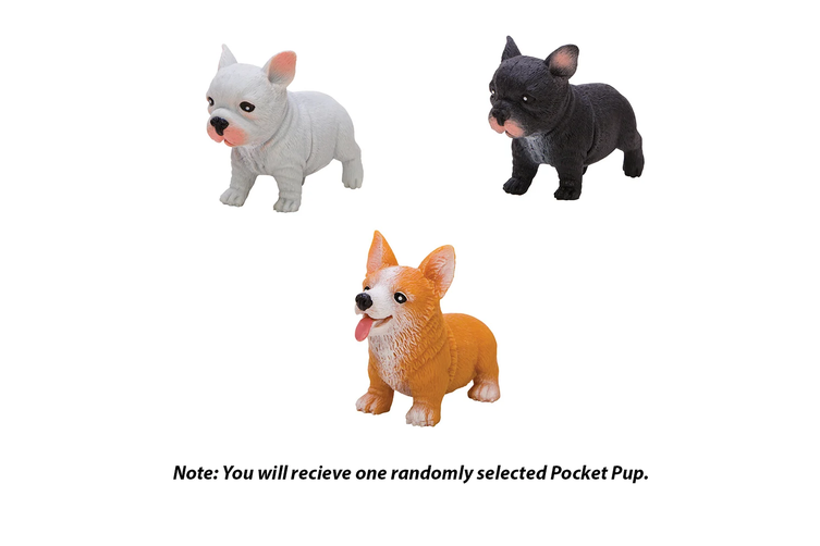 Schylling Pocket Pups Assortment