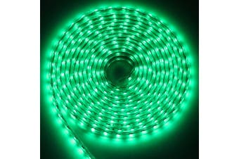 AC 220V 1000LM 5M LED Strip Light Waterproof Lamp with 300 LEDs-Green