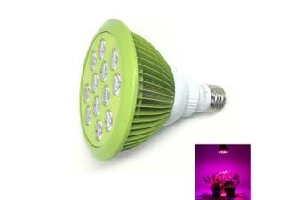 Youoklight 1PCS E27 24W Ac 85~265V 12 - Led Plant Grow Light - Mint Green-Green