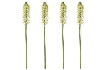 Rogue Pineapple Lily Stem Light Green Single Stem