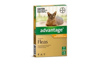 Advantage Flea Treatment for Small Cats up to 4kg Pack of 6