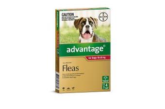 Advantage Flea Treatment for Large Dogs 10-25kg Pack of 4
