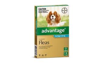 Advantage Flea Treatment for Medium Dogs 4-10kg Pack of 4