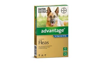 Advantage Flea Treatment for Extra Large Dogs over 25kg Pack of 4