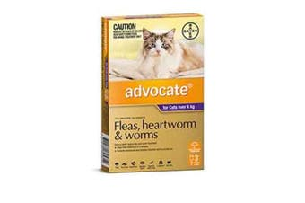 Advocate Cat Bayer 4KG Plus Large Pack of 3 Purple