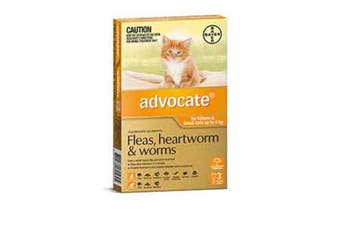 Advocate Cat Bayer 0-4KG Small Pack of 3 Orange