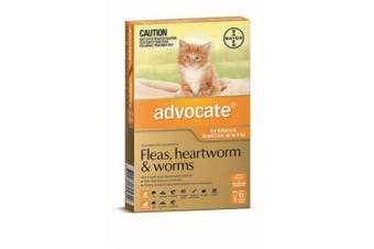 Advocate Cat Bayer 0-4KG Small Pack of 6 Orange