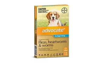 Advocate Dog Bayer 4-10KG Medium Pack of 3 Teal