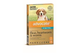 Advocate Dog Bayer 4-10KG Medium Pack of 6 Teal