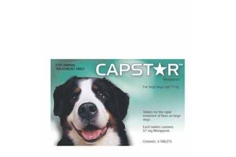 Capstar Flea Treatment Pack of 6 Tablet 57mg