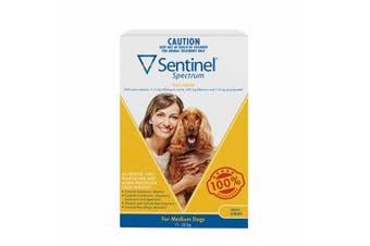 Sentinel Spectrum Tasty Chews for Medium Dogs 11-22kg Pack of 6