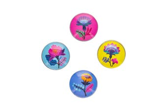 Ambrosia Aster 4 Piece Magnets Set