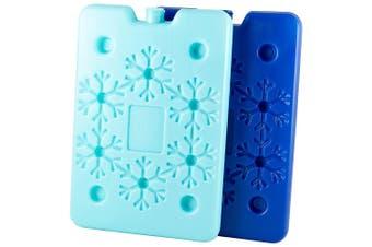 TakeAway Out Plastic 2 Piece Ice Cooler Brick Set Blue