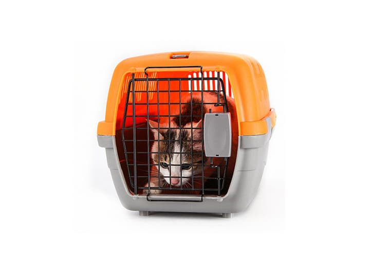 Airline Pet Box Outdoor Portable Pet Shipping Box  ORANGE