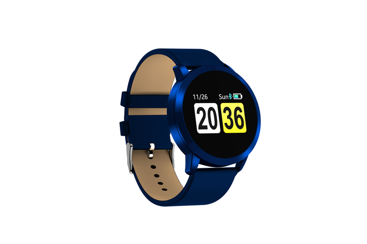 Q8 Smart Watch for Monitoring Heart Rate and Blood Pressure  BLUE
