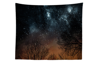"""Wall Hanging Decor Nature Art Polyester Fabric Tapestry, For Dorm Room, Bedroom,Living Room -40"""" x 60"""" (100cmx150cm)-877"""