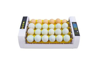 Flyline 24 Egg Incubator with Auto Turner for Chicken Duck Quail Bird