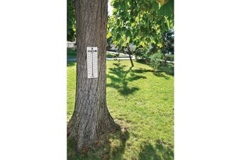 Fred & Friends Yard Goods Fact-O-Meter Thermometer